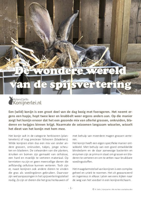 Cover artikel De wondere wereld van de spijsvertering