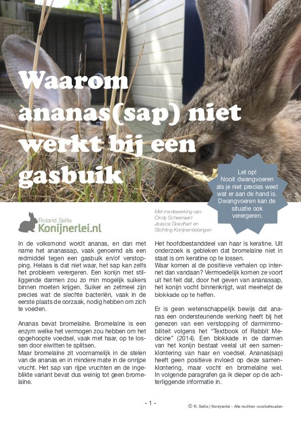 Cover artikel Waarom ananas(sap) niet werkt bij een gasbuik