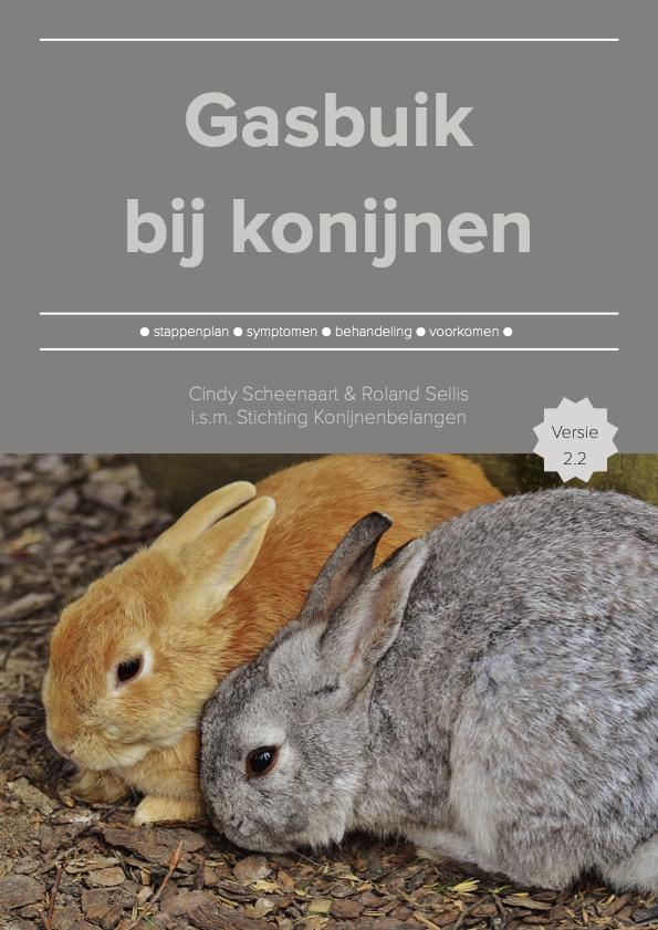 Cover artikel Gasbuik bij konijnen
